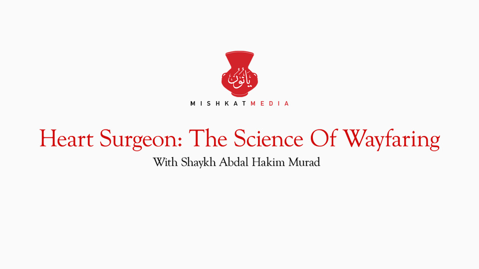 Heart Surgeon: The Science of Wayfaring
